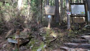 株杉の森入口